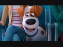 Первый трейлер мультфильма Тайная жизнь домашних животных 2