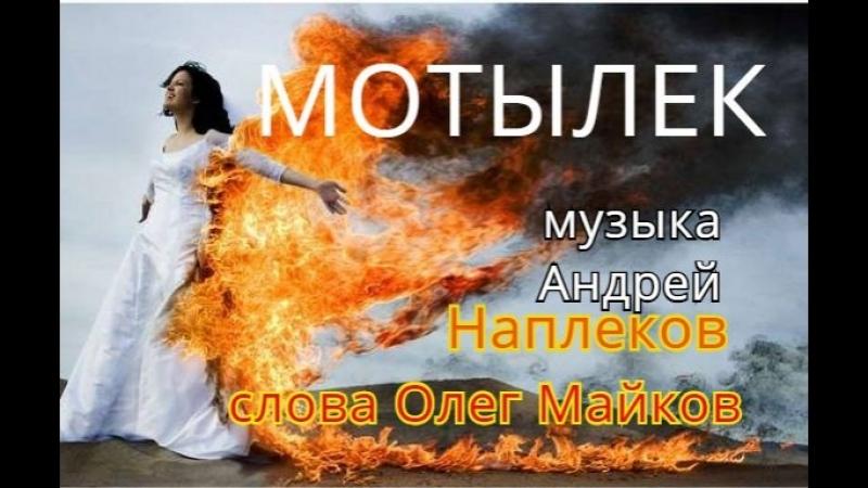 МОТЫЛЕК, муз. Андрей Наплеков, сл. Олег Майков