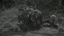 Richard Thorpe_1945_Que hay de nuevo, Cabo Hargrove (Robert Walker, Keenan Wynn, Jean Porter, Chill Wills, Hugo Haas, William Bill Phillips)