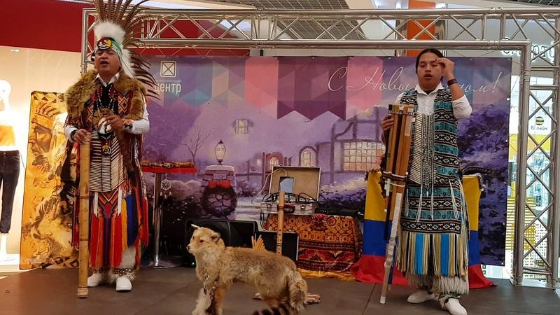 Sumac Kuyllur ( Richy David). Chirapaq . 30.12.2018, Dmitrov