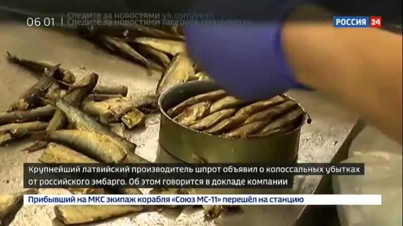 Тот еще шпрот латвийская компания несет убытки от российского эмбарго