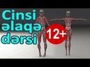 Cinsi Əlaqə Azərbaycanca Dərs