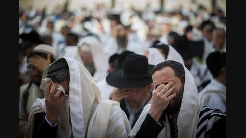 Рав. Даниэль Итахов - Плач в Еврейской традиции по книге Чудесный Советник