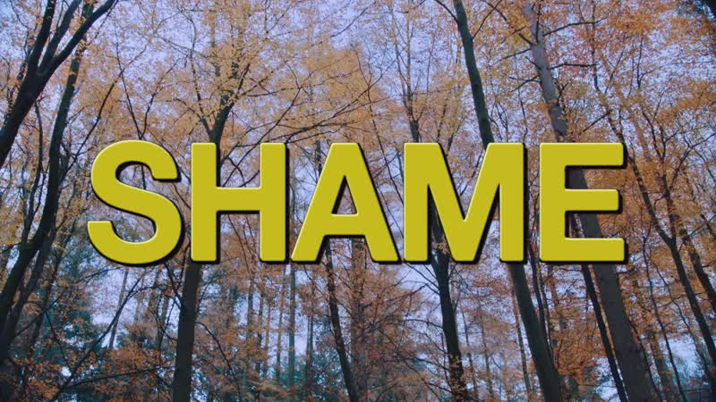 Shame - Dust on Trial