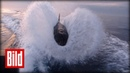 Killerwale jagen Motorboot Orca Wale vor Kalifornien angeln
