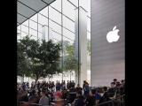 Стартовали продажи новых моделей iPhone