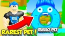 I'm The RAREST DONUT PET In This NEW SIMULATOR GAME Roblox