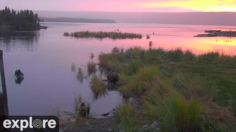 Онлайн трансляция Alaskan River Sunset