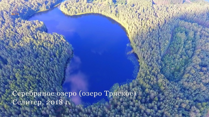Серебряное озеро озеро Тряское Селигер август 2018 г Lake Seliger Russia