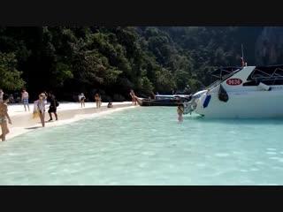 Monkey Beach Phi Phi Island Thailand