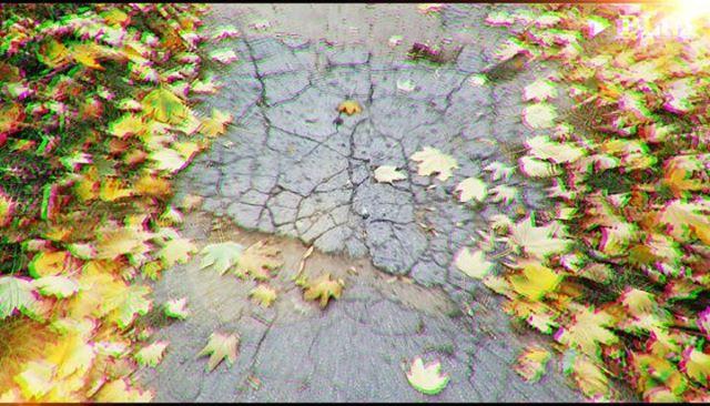 Arachnid_art video