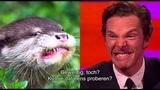 Otter foto's met Benedict Cumberbatch &amp Johnny Depp - The Graham Norton Show op Acht