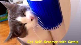 Cat self groomer with catnip by VK