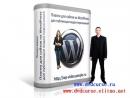 Плагин для публикации видео-двойников на сайты и блоги WordPress. Сергей Панферов