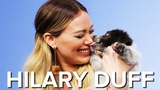 Hilary Duff Plays With Puppies While Answering Fan Questions