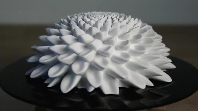 BLOOMS Strobe Sculpture by John Edmark