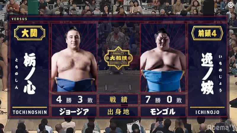Tochinoshin vs Ichinojo Haru 2019 Makuuchi Day 8