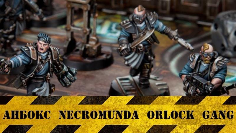 Анбокс Necromunda Orlock Gang
