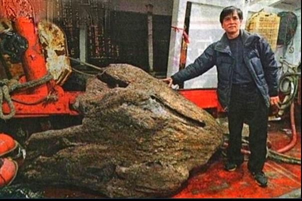 Самое дорогое дерево в мире Простой рыбак Мин Квок из Гонконга кормил свою семью тем, что рыбачил и продавал улов на рынках . И ничего не предвещало , что в его жизни может произойти
