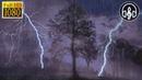 Сильный Дождь с Грозой Для Расслабления, Снятия Стресса, Учебы и Глубокого Сна