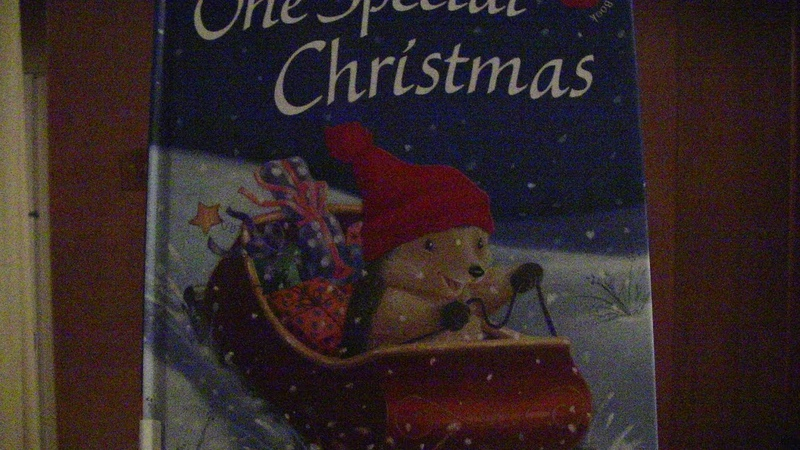 Tim ReadsONE SPECIAL CHRISTMAS By M.Christina Butler