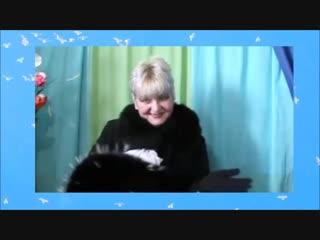 Весёлая песенка про кота=2014г
