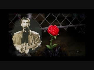 Сергей Коржуков - Роза красная