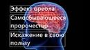 Эффект ореола Самосбывающееся пророчество Искажение в свою пользу Когнитивные искажения №5