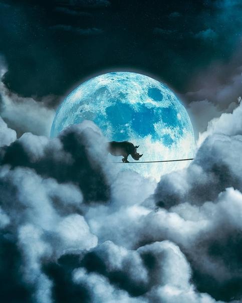«Лунная прогулка»