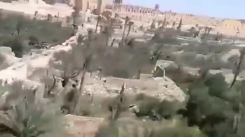 ВКС в Сирии