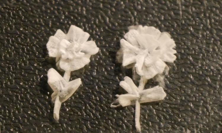 Роза(цветок) в оргстекле-1. rose in plexiglass . production-1
