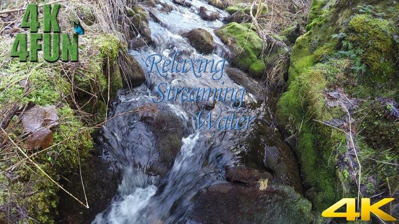 Relaxing Water Stream in Norway UHD