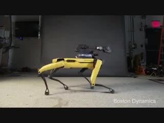 Танцующий робот Spot под Sexy Back