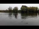 Осенние купания в р.Клязьма