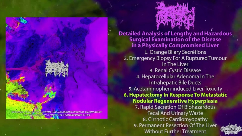 Serotonin Leakage Detailed Analysis FULL EP 2019 Goregrind