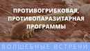 Елена Бахтина Противогрибковая, противопаразитарная программы