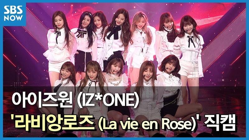 SBS [인기가요] - 아이즈원 '라비앙로즈(La Vie en Rose)' 4K 직캠 / SBS 'INKIGAYO' IZ*ONE 4K FanCam