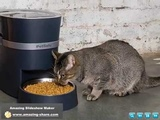 smart Feed Automatic Dog and Cat Feeder