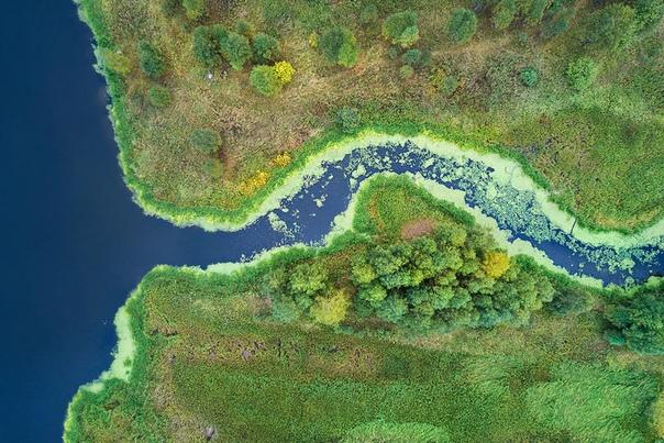 Аэроснимок притока реки Чусовая, Свердловская область Фото: Василий Яковлев