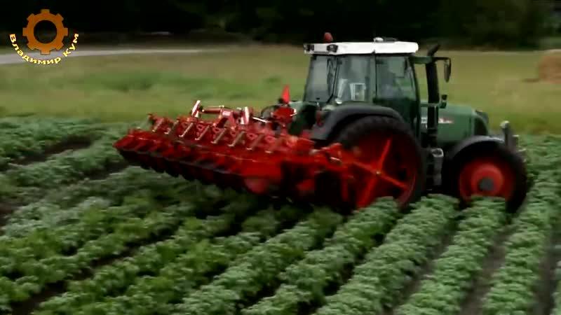 Как выращивают картошку в Германии