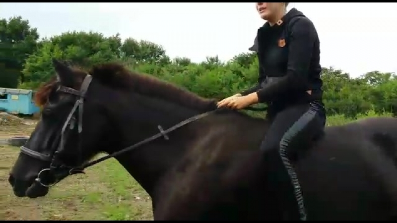 Запрыгиваем на лошадь без седла