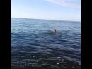 закрытие купального сезона в Балтийском море) Светлогорск. 09.09.2018