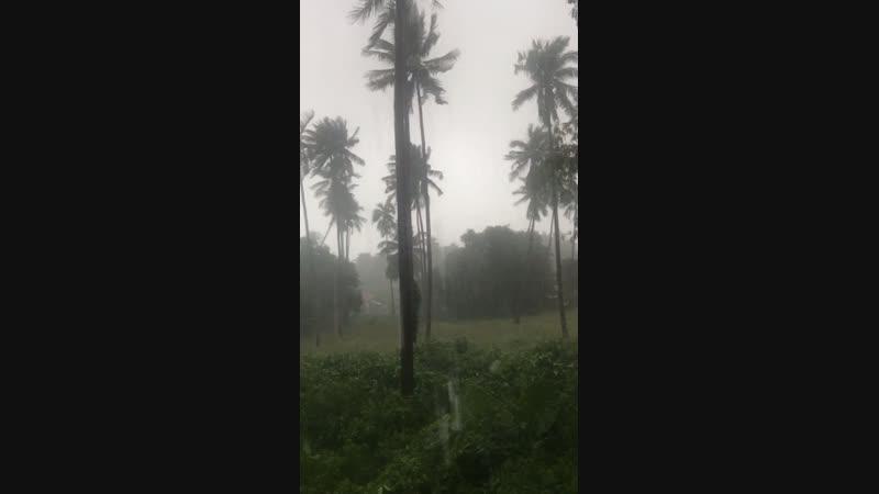 У нас Тайфун ! Всё будет норм 👌👌 Даже в России по новостям покозали