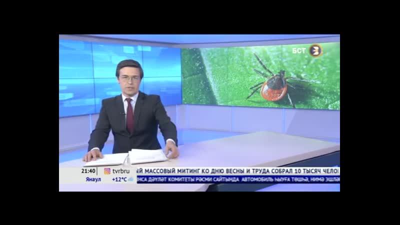 В Башкортостане открыли горячую линию по профилактике клещевого энцефалита