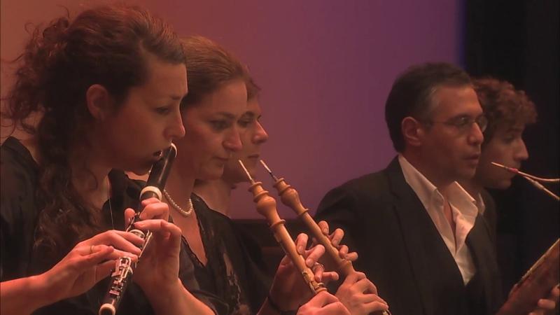 J. Haydn - Symphonie Parisienne « La Poule » (extrait) @Auditorium du Louvre