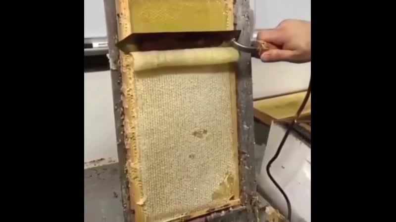 Специальный нагревающийся нож снимает пчелиный воск