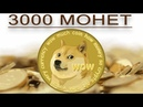 Как получить 3000 монет криптовалюты DOGECOIN