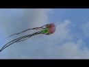 Воздушный змеи в Шэньчжэне
