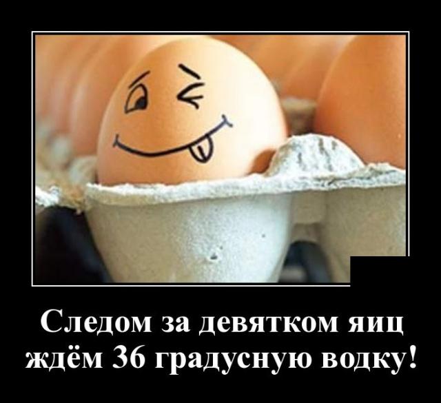 http://pp.userapi.com/c850332/v850332001/ba1c6/SEfVbS8b-nI.jpg