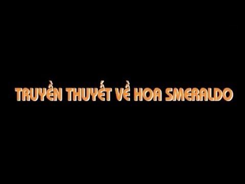 Quà Tặng Cuộc Sống - Truyền thuyết về hoa Smeralido - Phim Hay Nhất - Phim Hoạt Hình Hay Nhất 2019